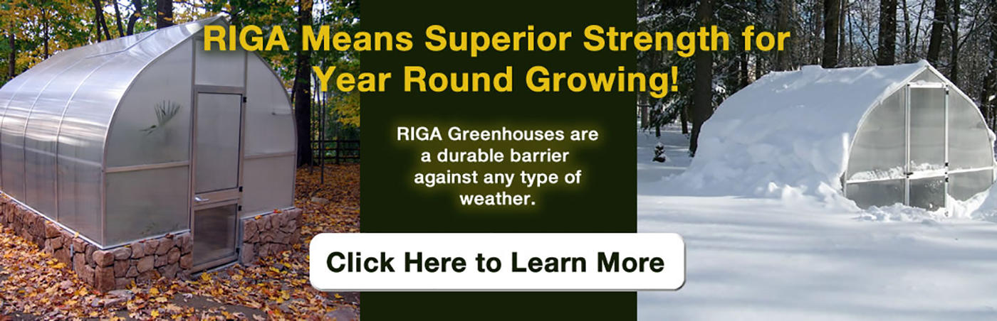 RIGA Greenhouses are durable agaunst any kind of weather